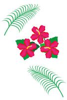ピンクのハイビスカスの花とヤシの葉