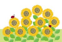 ひまわりの花とてんとう虫のメッセージカード