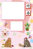 お洒落な二匹の猿のお正月写真フレーム年賀状