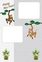 モダンな二匹の猿のグレーのフォトフレーム年賀状