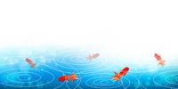 金魚 夏 風景 背景