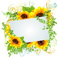 夏らしい向日葵の綺麗なフレーム