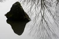 和の美/石の表情