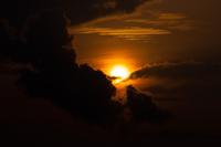 原始を思わせる屋久島の日の出