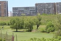 荒川河川敷緑地