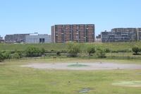 荒川河川敷 ゴルフ練習場