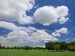 夏空と公園