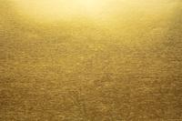 金紙のテクスチャの背景