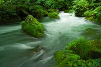 奥入瀬渓流・阿修羅の流れ
