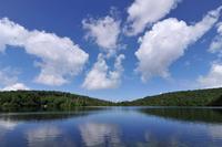 長野県白駒池の青空
