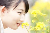 菜の花に顔を寄せるOL