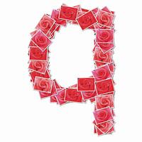 バラの花でアルファベットの小文字