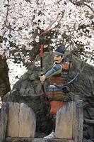 武者人形と桜