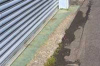 削れたコンクリート床
