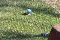 パーゴルフ場