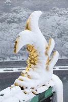 大阪城金の鯱と雪