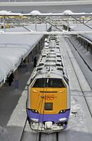 鉄道・JR東日本 車両 485系 特急白鳥