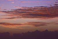 夕映えの波状雲