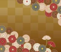 菊の花の和柄模様