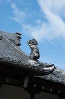 屋根の上のシャチホコ