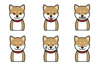 犬の表情(笑う、怒る、吠える)