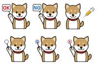 犬の表情(質問、回答、注射)