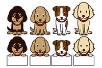犬のバリエーション