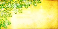 もみじ 新緑 葉 背景