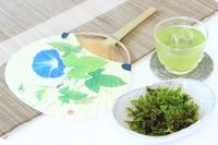 涼しげな苔と冷茶と団扇