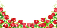 バラ 花 風景 背景