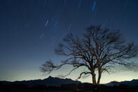 野辺山高原・流れる星たちと山梨の木
