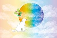 虹色の日の出と白い犬のポストカード