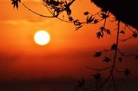 日の出の光景