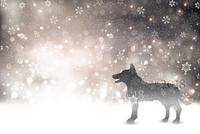 戌 年賀状 雪 背景