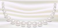 真珠 アクセサリー シルク 背景
