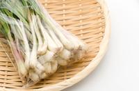 島らっきょう(沖縄の島野菜)