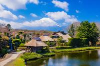 忍野八海の榛の木林資料館と富士山