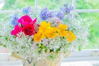 ナスタチウムと色々な花のアレンジメント