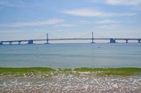 広安里ビーチから見た広安大橋