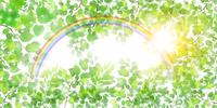 新緑 虹 風景 背景