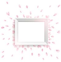 桜の花びらと白い額縁