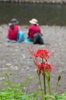 ヒガンバナと河原で休むハイカー
