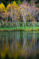 黄葉の志賀高原・木戸池