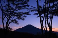 夕闇の森と富士山のシルエット
