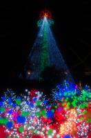 クリスマスイルミネーションの森