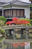 四天王寺の石橋