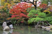 四天王寺の紅葉