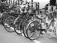 道端の放置自転車