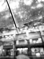 雨の丸の内
