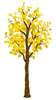 紅葉した木 黄色